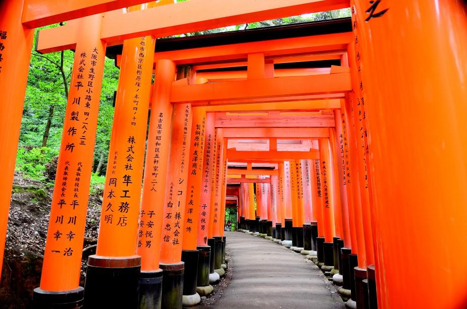 Learn kanji or katakana